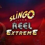 slingo Bingo reel extreme