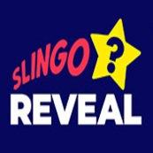 slingo Bingo-reveal